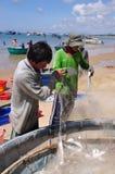 地方渔夫从他们的在Lagi海滩的捕鱼网去除鱼 图库摄影