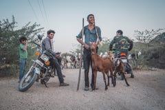 地方牧羊人 免版税库存照片