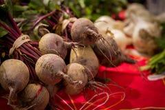 地方甜菜在农夫市场上 库存照片