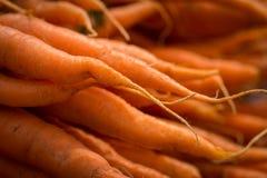 地方红萝卜在农夫市场上 免版税库存图片