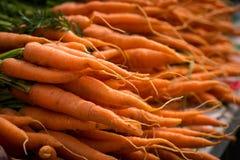 地方红萝卜在农夫市场上 免版税库存照片
