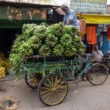 地方食物市场在Tiruvannamalai 免版税库存照片