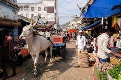 地方食物市场在Tiruvannamalai 库存照片