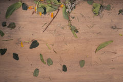 地板,花店残羹剩饭破烂物,裁减留下花 库存照片
