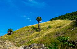 地标夏天海滩普吉岛泰国 免版税图库摄影