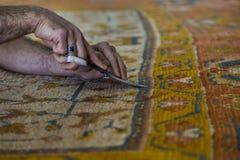 地毯恢复 库存图片