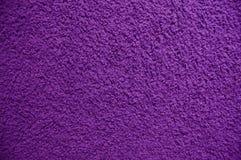地毯紫色 免版税库存图片