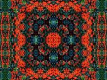 地毯绿色红色 图库摄影