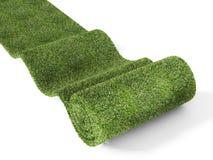 地毯eco绿色滚 库存例证