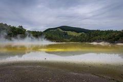 地热湖Waiotapu新西兰 免版税库存照片