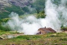 地热田在冰岛 免版税库存照片