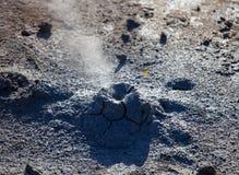 地热的冰岛 Namafjall -在Hverir的领域的区域 环境美化煮沸的泥和温泉城水池  游人 库存图片