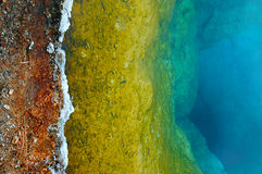 地热风景在黄石国家公园 免版税库存照片