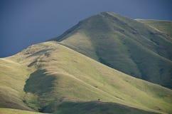 地狱峡谷沙漠山在春天 免版税库存图片