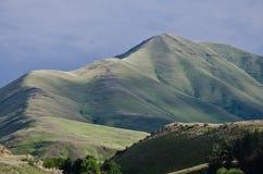 地狱峡谷沙漠山在春天 库存照片