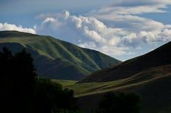 地狱峡谷绿色倾斜在春天 免版税库存照片