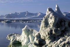 地球冰了 免版税图库摄影