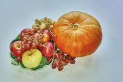 地球和太阳的秋天的果子收获 免版税图库摄影