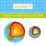 地球和月亮横断面Infographic 免版税库存图片