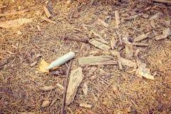 地球在有袖子、芯片、枝杈和针的森林里 免版税库存图片