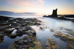 地球大教堂岩石, Kiama柱子  库存图片