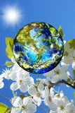 地球日。季节 免版税库存图片