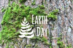 地球日卡片装饰了在绿色青苔树皮背景的手拉的事假 免版税库存图片