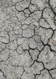 地球是干旱的 免版税库存照片
