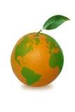地球桔子 免版税库存图片