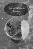 地球概念 免版税库存照片