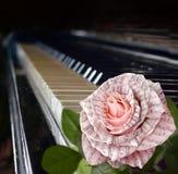 地球耳机音符 与笔记的美丽的桃红色玫瑰 库存图片