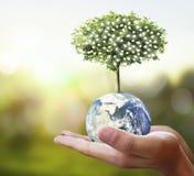 地球,地球在人的手,拿着我们的行星地球glowin的手上 库存图片