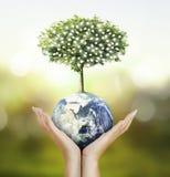地球,地球在人的手,拿着我们的行星地球glowin的手上 免版税库存照片