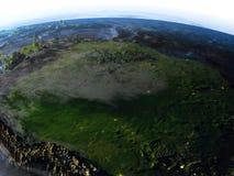 地球-可看见的海底上的亚马逊雨林 库存例证