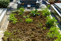 地皮在一个新的坟墓的一座公墓 库存图片