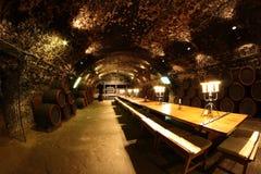 地窖科涅克白兰地侧那里橡木喝酒 库存图片
