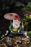 地精在森林里用蘑菇 免版税库存照片