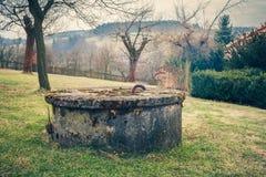 地衣和青苔盖的年迈的庭院水井 图库摄影
