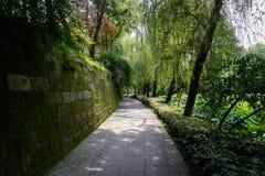 地衣隐蔽的墙壁和荷花池之间的遮荫道路在夏天 免版税库存图片