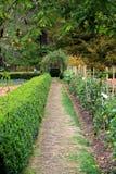 整洁地被整理的灌木在季节性庭院里 免版税库存图片