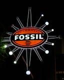 地道化石商店,奥兰多, FL 免版税库存照片