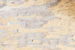 地道老被绘的木头纹理背景  免版税库存照片