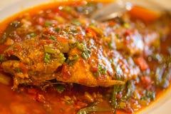 地道辣中国食物,特写镜头 库存照片