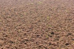 地面土壤耕种 免版税库存照片