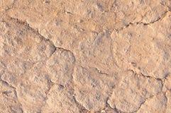 地面的纹理,土壤特写镜头 库存照片