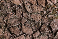 地面纹理 免版税库存图片