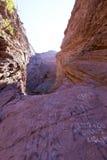 地质岩层加尔甘塔del蝙蝠鱼,阿根廷 免版税图库摄影