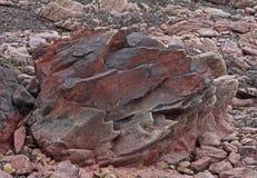 地质研究峭壁面孔, pembrokeshire,威尔士 库存照片