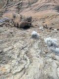 地质风景在冬天 免版税库存照片