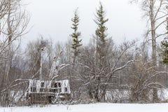 场面多雪的冬天 免版税库存图片
